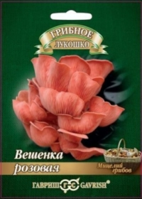Грибы Вешенка розовая (Гавриш)