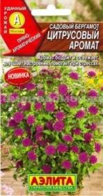 Бергамот Цитрусовый аромат садовый  (Аэлита)