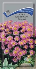 Астра многолетняя альпийская розовая (Поиск)