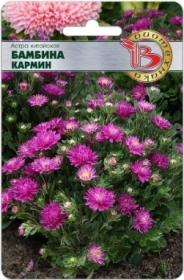 Астра Бамбина Кармин (Биотехника)