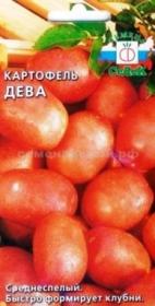 Картофель Дева (СеДек)