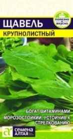 Щавель Крупнолистный (Семена Алтая)