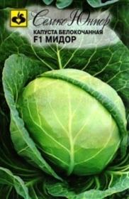 Капуста Мидор F1  (Семко)