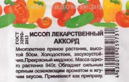 Иссоп Аккорд лекарственный, 0,4г БП (эконом серия) (СдС)