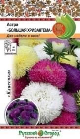 Астра Большая хризантема смесь (НК)