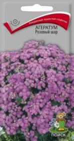 Агератум Розовый шар (Поиск)